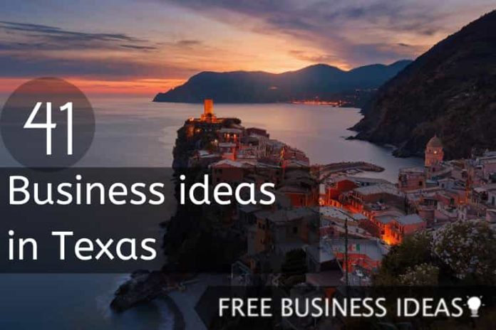 business ideas in texas